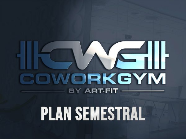 Plan Semestral